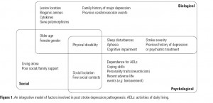 Figure 1. An integrative model of factors involved in post stroke depression pathogenesis. ADLs: activities of daily living.