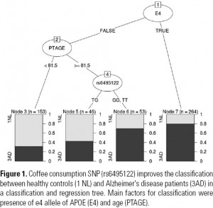 Figure 1. Coffee consumption SNP (rs6495122) improves the classification between healthy controls (1 NL) and Alzheimer's disease patients (3AD) in a classification and regression tree. Main factors for classification were presence of e4 allele of APOE (E4) and age (PTAGE).