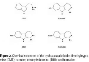 Figure 2. Chemical structures of the ayahuasca alkaloids: dimethyltryptamine (DMT); harmine; tetrahydroharmine (THH); and harmaline.