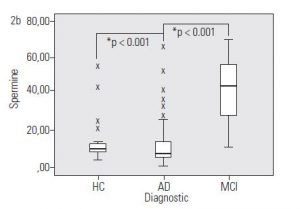 Figure 2b. Concentration of PAs metabolites in AD and MCI patients – Spermine levels in MCI patients are 3 times higher than in AD patients and HC. p: significance of post-hoc tests; AD: Alzheimer's disease; MCI: mild cognitive impairment; HC: healthy controls.